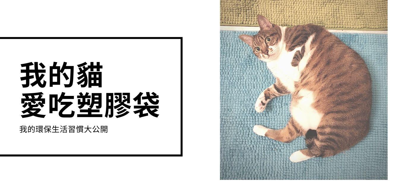 我的貓愛吃塑膠袋—我的環保減塑歷程大公開